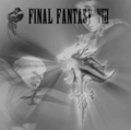 Squall Leonhart VS Seifer Almasy - final-fantasy-viii photo