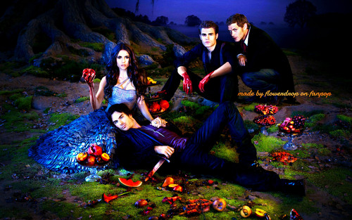 The Vampire Diaries wolpeyper possibly containing a bouquet, an alpinist, and sunniness entitled TVD wolpeyper ღ