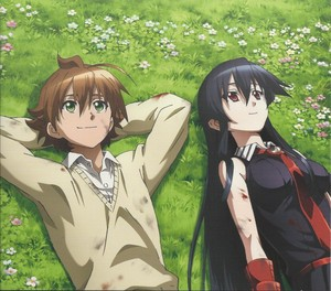 Tatsumi and Akame