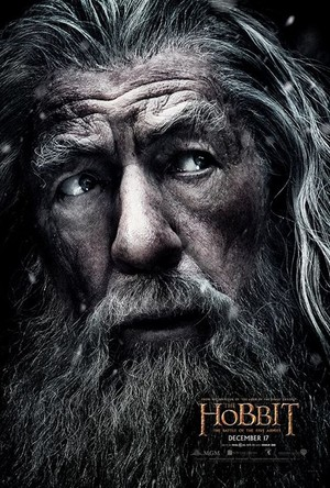 The Hobbit: The Battle Of The Five Armies - Gandalf the Grey Character Poster