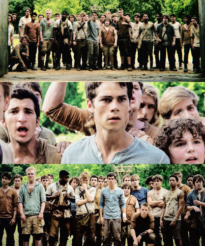 The Maze Runner Hintergrund probably with a banane titled The Maze Runner