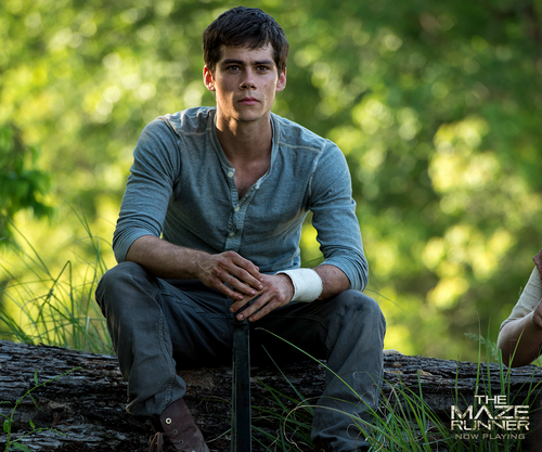 The Maze Runner پیپر وال with a mulch کے, mulch titled Thomas
