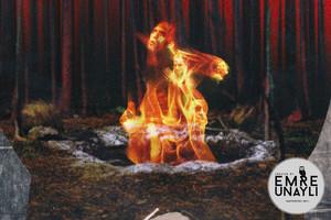 Twin Peaks Revival Posters