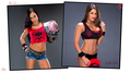 Unseen Diva Photos - AJ Lee and Nikki Bella