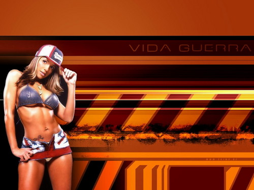 Vida Guerra wallpaper probably containing a bikini called Vida Guerra
