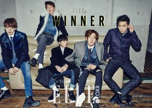 Winner hotties for elle korea☜❤☞
