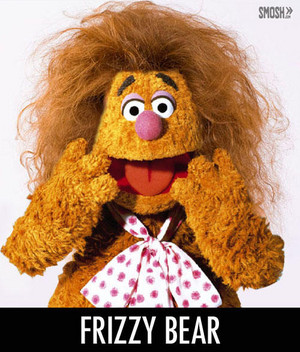 frizzy beruang