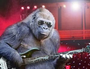 monkey gitar