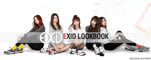 EXID (이엑스아이디) achtergrond called EXID for AKII CLASSIC KOREA