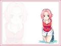 sakura haruno - haruno-sakura photo