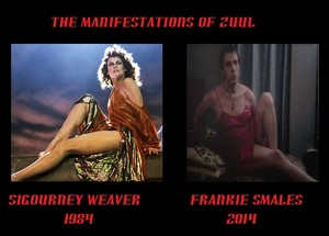 zuul from 1984 to 2014