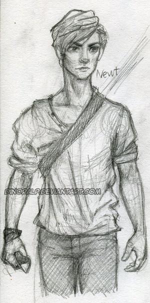 Newt Scketch
