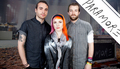 paramore -         PaRaM♥Re! wallpaper