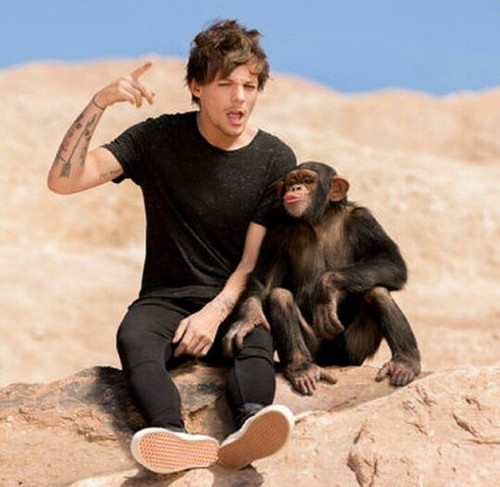 Steal My Girl Louis Tomlinson Photo 37708625 Fanpop