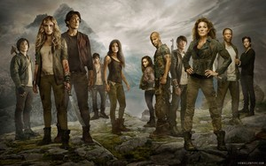 ● The 100 ●