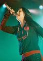 Amy Leeon the concert - amy-lee photo