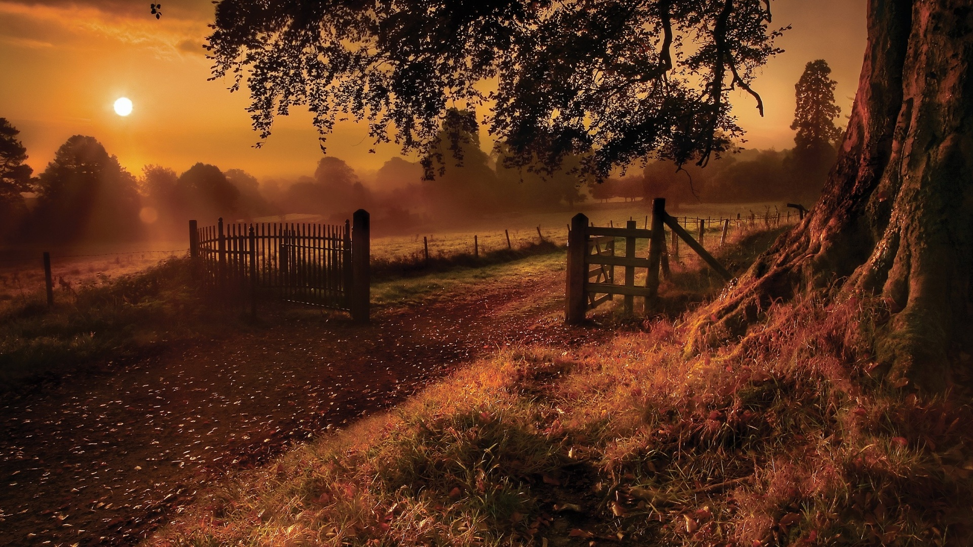 Brandees Place Images Autumn Image HD Wallpaper And Background Photos
