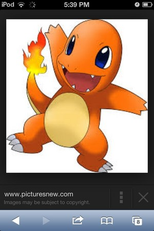 Charmander pic from Internet