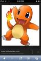 Charmander pic from Internet - pokemon photo