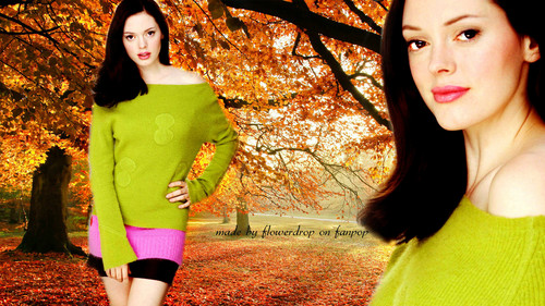 Charmed wallpaper possibly with hosiery, a legging, and a stocking called Charmed Wallpaperღ