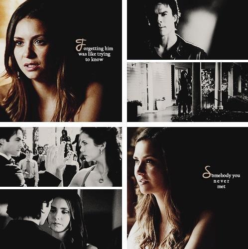 Damon&Elena and Ian&Nina wallpaper containing a portrait entitled Delena love OTP