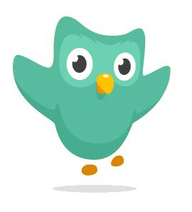 Duo Owl 颜色