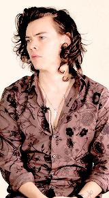 Harry ↳ Floral Print