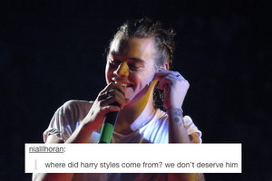 Harry Styles Twitter Appreciation Post x