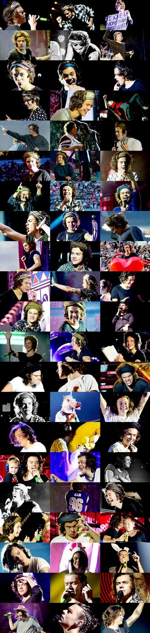 Harry Styles || Where We Are Collage 🍀
