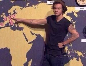 Harry Styles 🍀