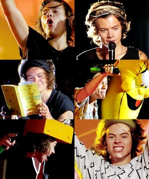 Harry || Yellow