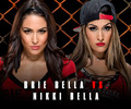 Hell in a Cell 2014 - Brie Bella vs Nikki Bella