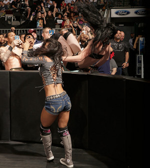 Hell in a Cell Digitals 10/26/14