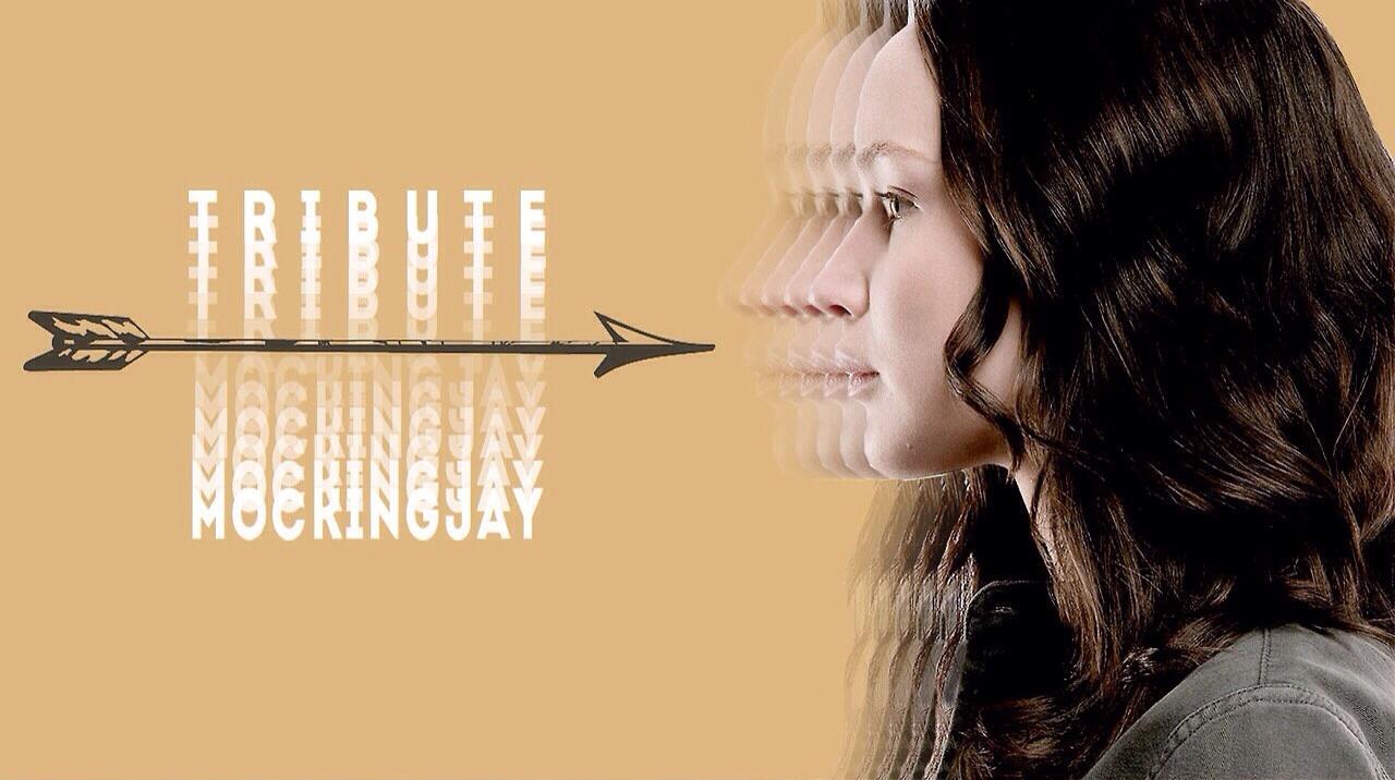 Katniss Everdeen   Tribute to Mockingjay