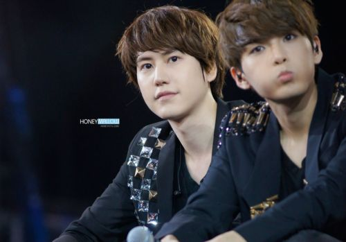 kyuhyun and ryeowook relationship quizzes