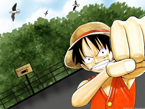 Monkey D. Luffy fond d'écran with a bonnet called Luffy One Piece