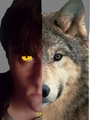 Me and my wolf form - wolfblood photo