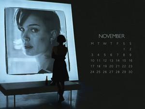 NP.COM Calendar - November