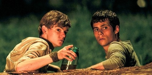 The Maze Runner Hintergrund titled Newt and Thomas