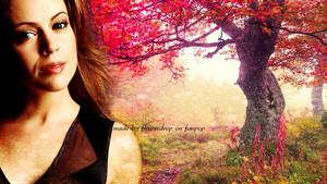 Phoebe Wallpaperღ