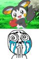 Pokemon Meme - pokemon photo