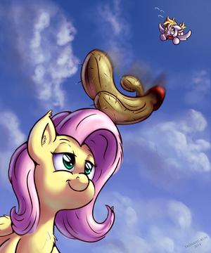 acak Ponies