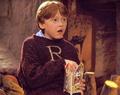 Ron Weasley HP 1