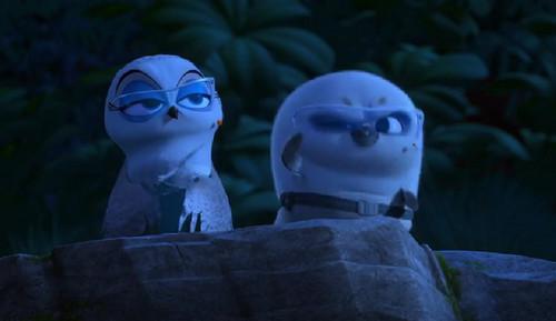 पेंग्विन्स ऑफ मॅडगास्कर वॉलपेपर titled Short Fuse and Eva