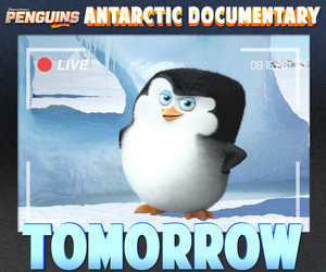 "Skipper advertises the new ""Antarctic Documentary"" scene"