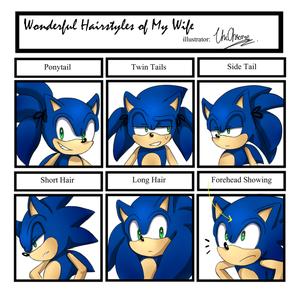 Sonic Hairstyles Meme