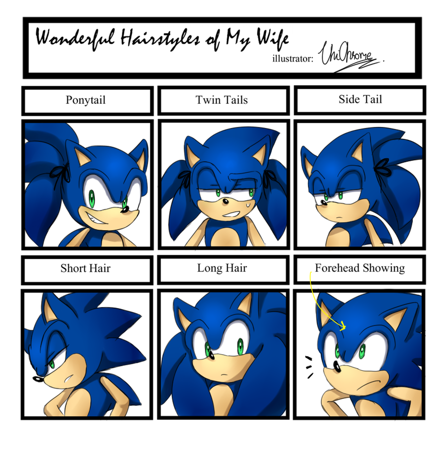 Sonic Hairstyles Meme Sonic The Hedgehog Foto 37798450 Fanpop Page 3