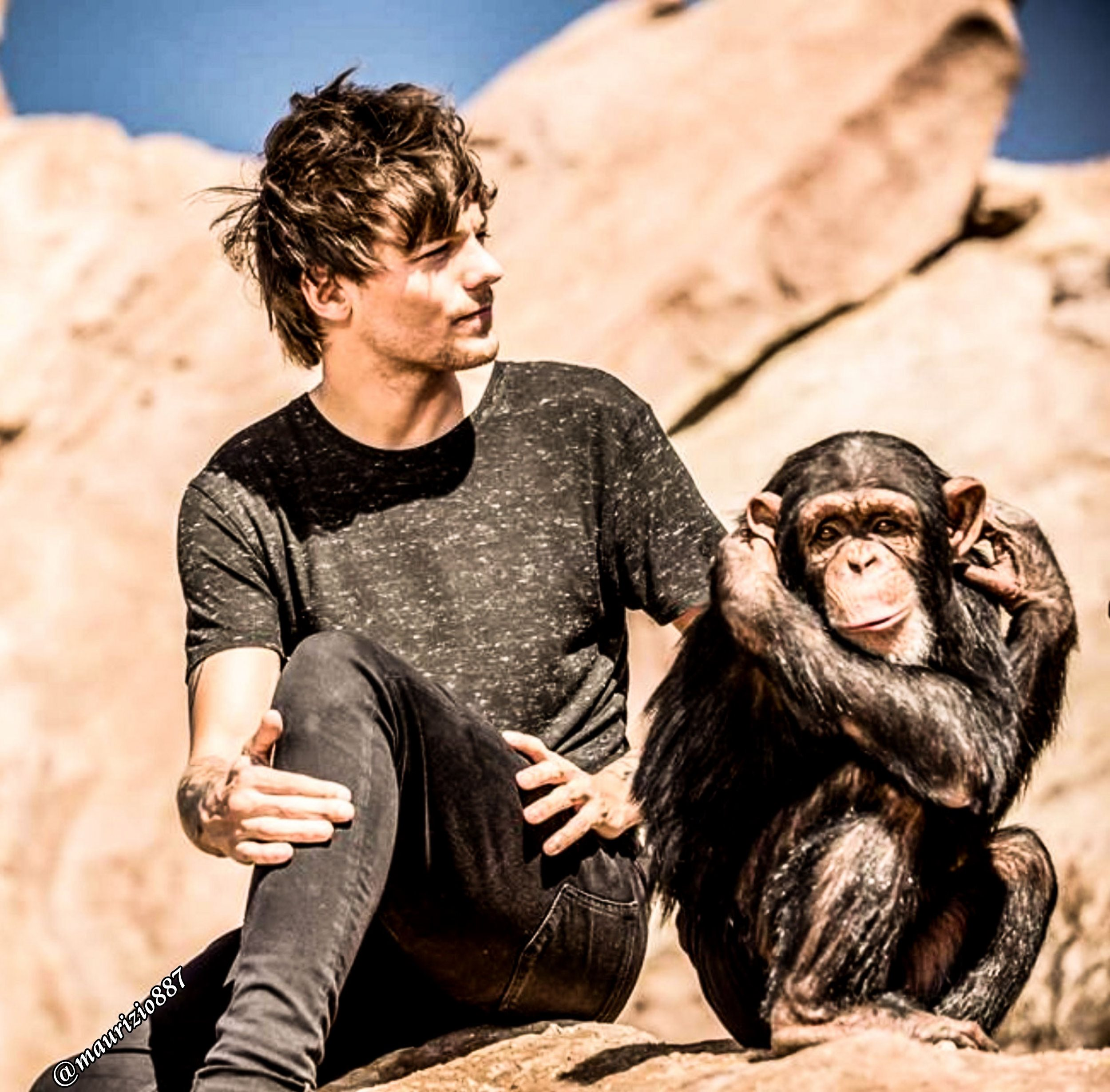 Steal my girl one direction photo 37707535 fanpop