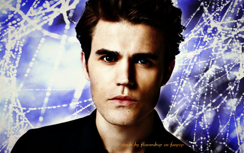 diários do vampiro wallpaper with a portrait entitled TVD wallpaper ღ