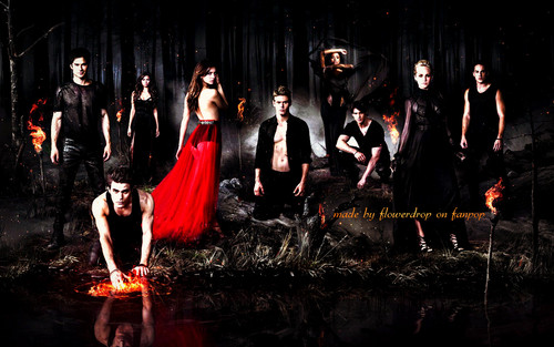 the vampire diaries wallpaper entitled TVD wallpaper ღ